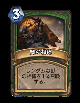 th_animal-companion
